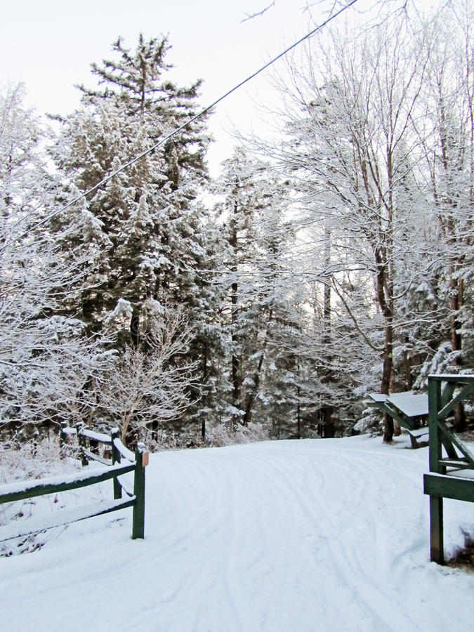Oud smeed sneeuw stock foto's