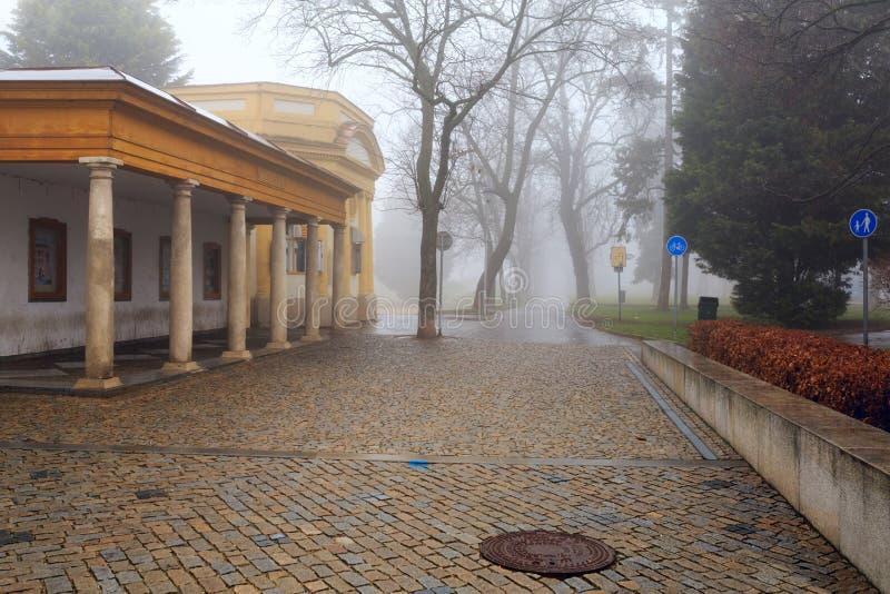 Oud stadspark op een mistige de winterdag Znojmo, Tsjechische Republiek, Europa royalty-vrije stock foto's