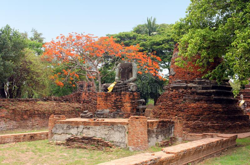 Oud standbeeld van Boedha in ruïnes, binnen een oude tempel Ayutthaya, Thailand royalty-vrije stock foto