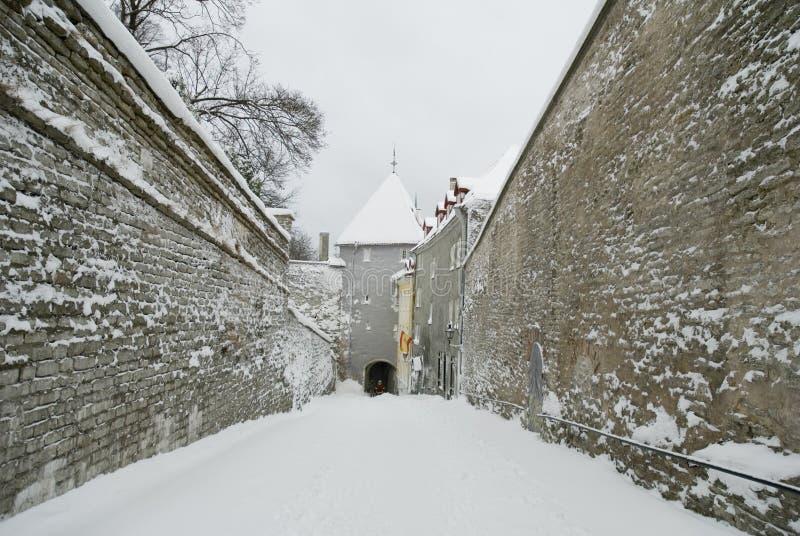 Oud Tallinn, Estland, de winter   royalty-vrije stock afbeeldingen