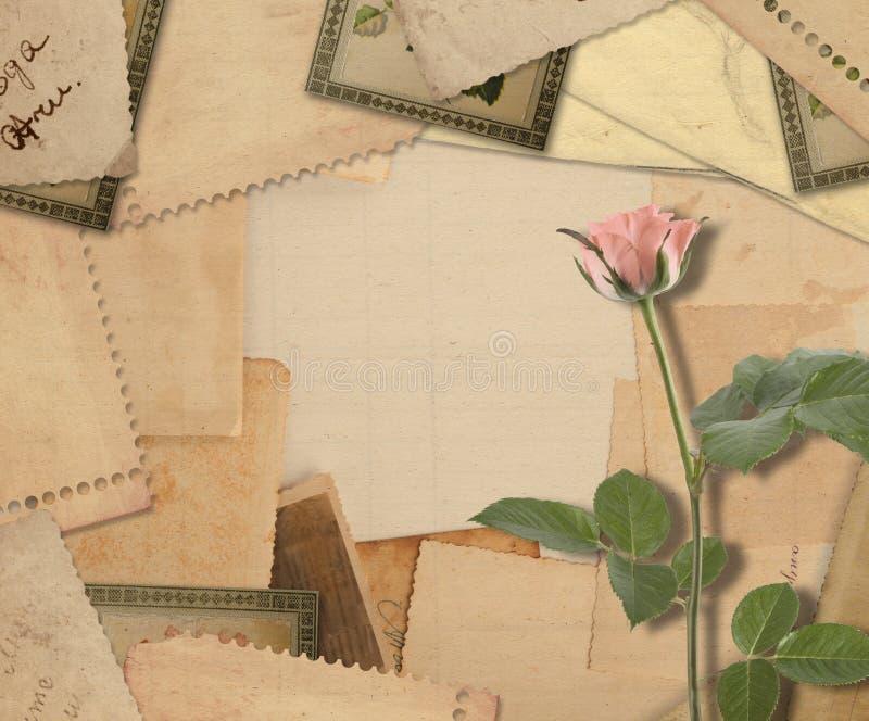 Oud uitstekend archief met foto's en roze rozen royalty-vrije stock fotografie