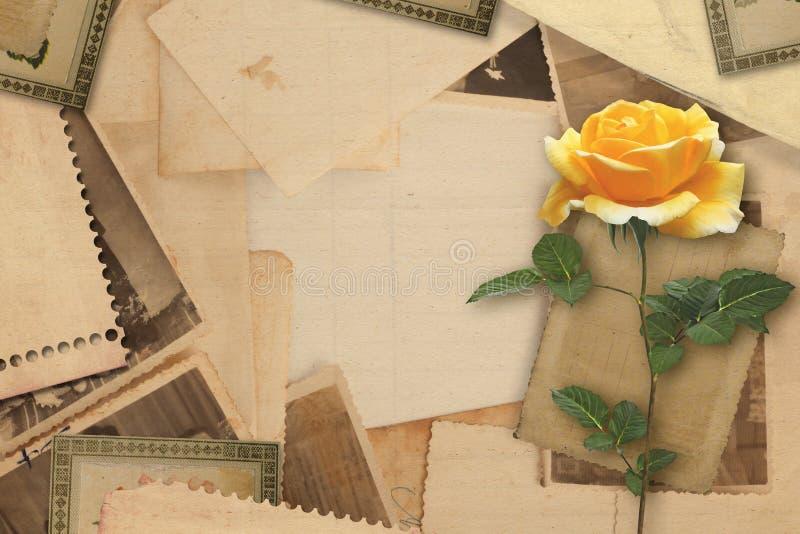 Oud uitstekend archief met gele rozen royalty-vrije stock foto's