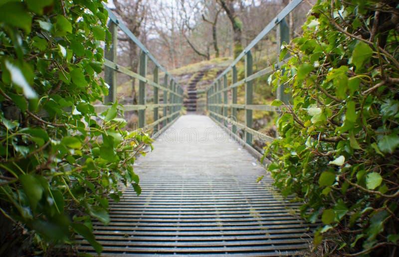 Oud van de Noord- voetbrug Wales, het UK stock afbeeldingen