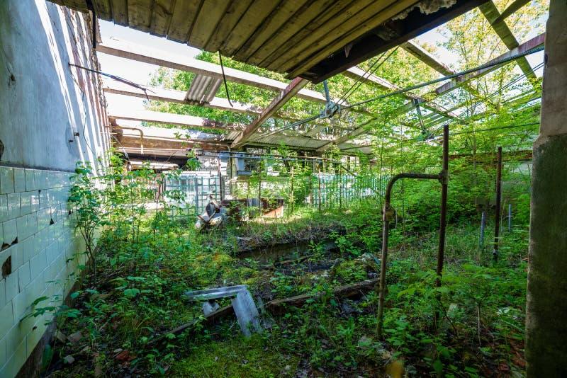 oud verlaten boerderijbinnenland stock afbeelding