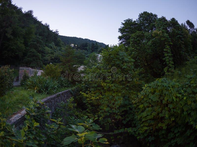 Oud verlaten groen park voor de berg stock afbeeldingen