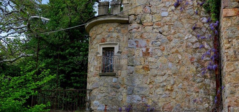 Oud verlaten kasteel in één van de bossen in Europa stock afbeeldingen