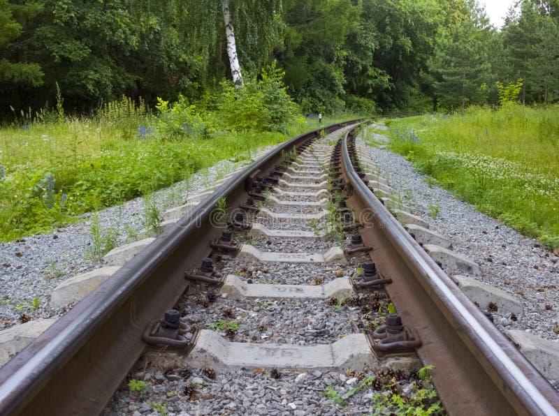 Oud Verlaten spoorwegspoor die in hout verdwijnen stock foto