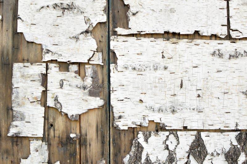 Oude afgebroken witte schorstextuur met nietjes op bruine houten planken royalty-vrije stock afbeelding