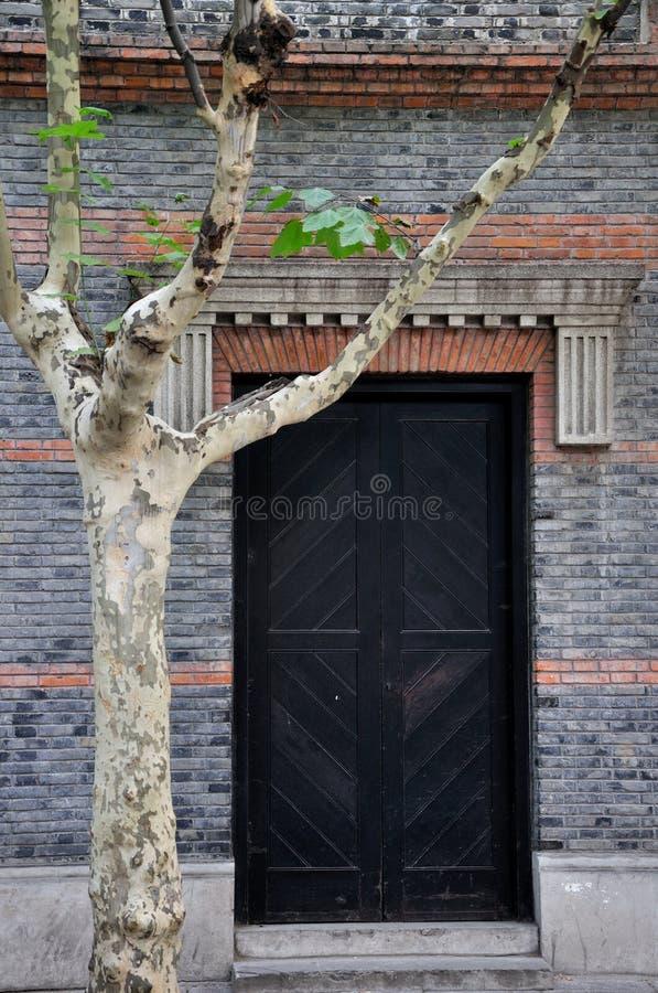 Oude architectuurdeur en Phoenix boom stock afbeeldingen