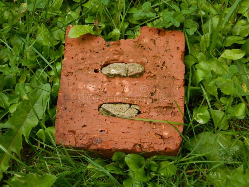 Oude baksteen in het groene gras royalty-vrije stock fotografie