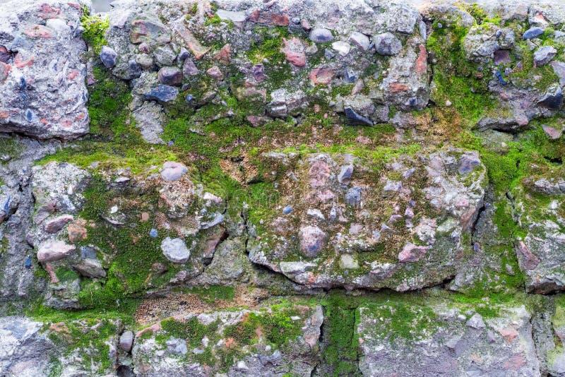 Oude bakstenen muurtextuur met mos royalty-vrije stock afbeelding