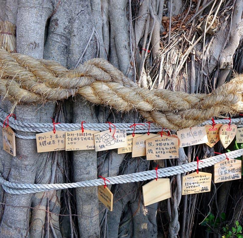 Oude Banyan die Boom wensen stock fotografie