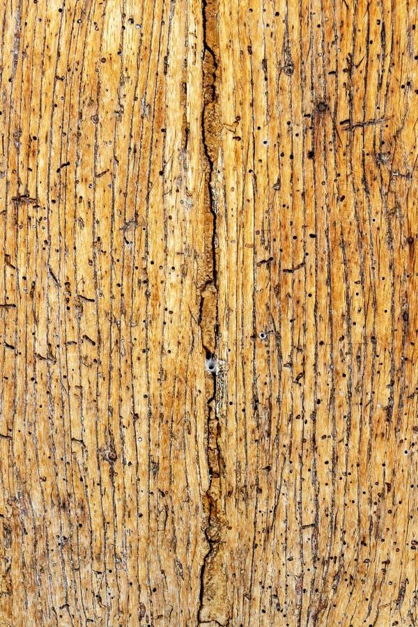 Oude beschadigde houten oppervlakte royalty-vrije stock foto's