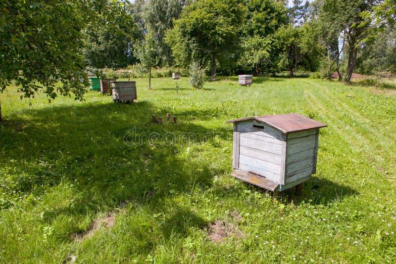 Oude bijenkorven in tuin royalty-vrije stock fotografie