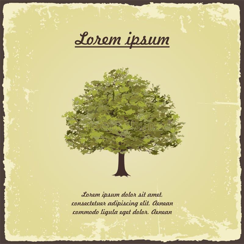 Oude boom op uitstekend document Vector stock illustratie