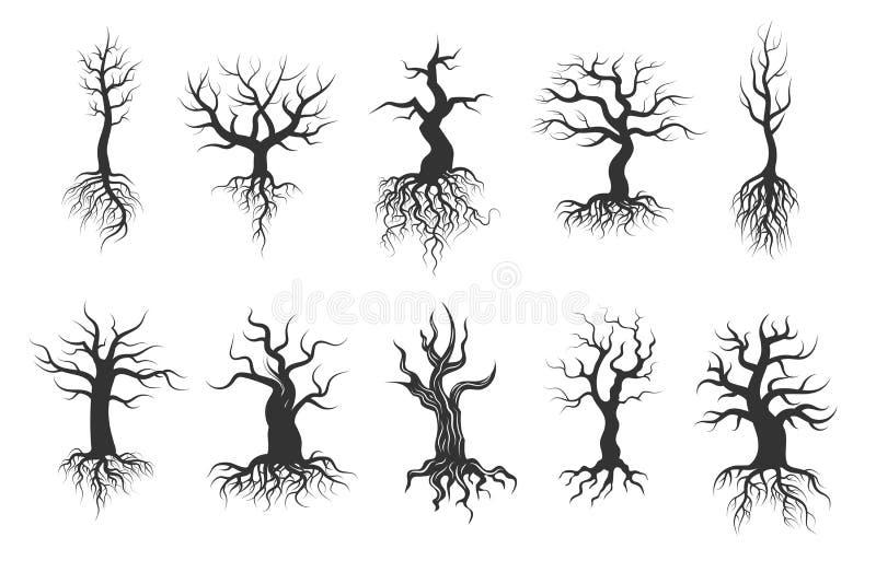 Oude boom vectorsilhouetten met wortels vectorreeks vector illustratie