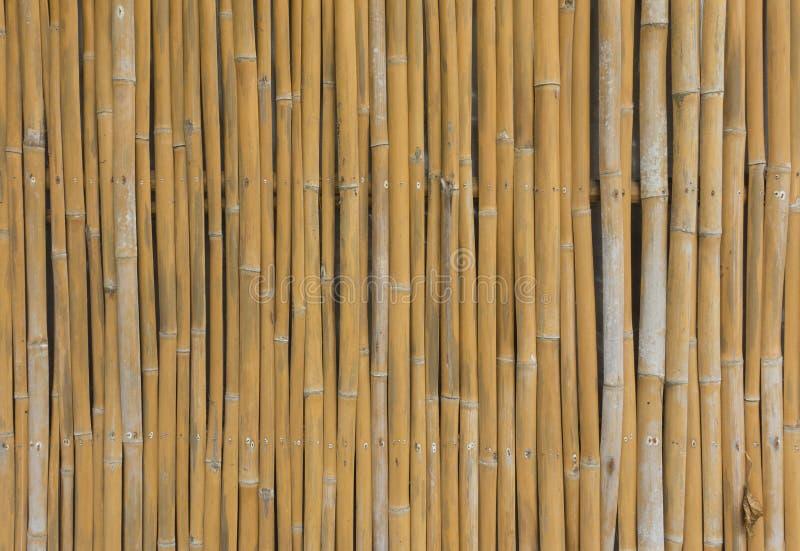 Oude bruine de omheiningstextuur van de bamboeplank royalty-vrije stock afbeeldingen