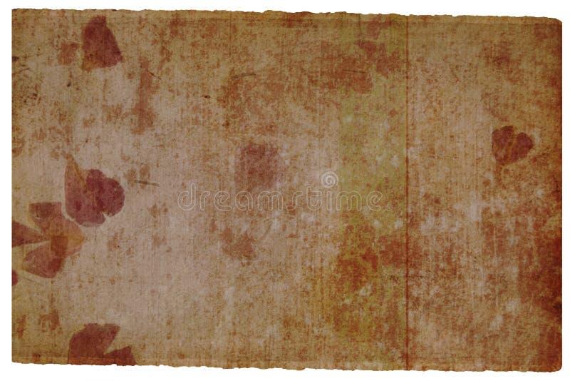 Oude bruine pagina met bloemdetail stock illustratie