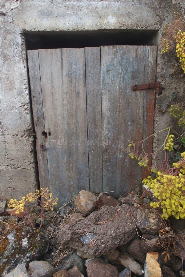 Oude buitendeur in een ruïnehuis met vegetatie stock afbeelding