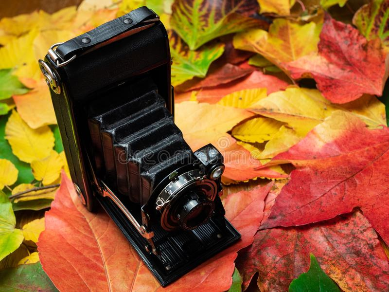 Oude camera op de herfstbladeren royalty-vrije stock afbeeldingen