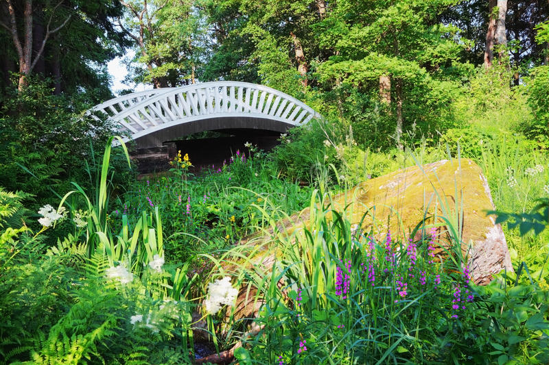 Oude Chinese brug in het park van Mon Repos, Vyborg, Rusland. stock afbeeldingen