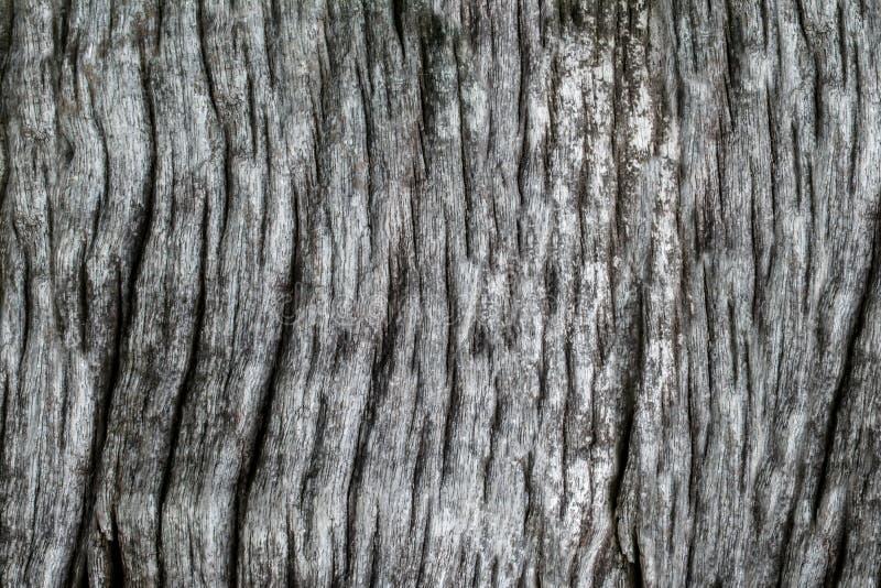 Oude de muurachtergrond van de Grunge grijze en zwarte houten textuur stock afbeeldingen