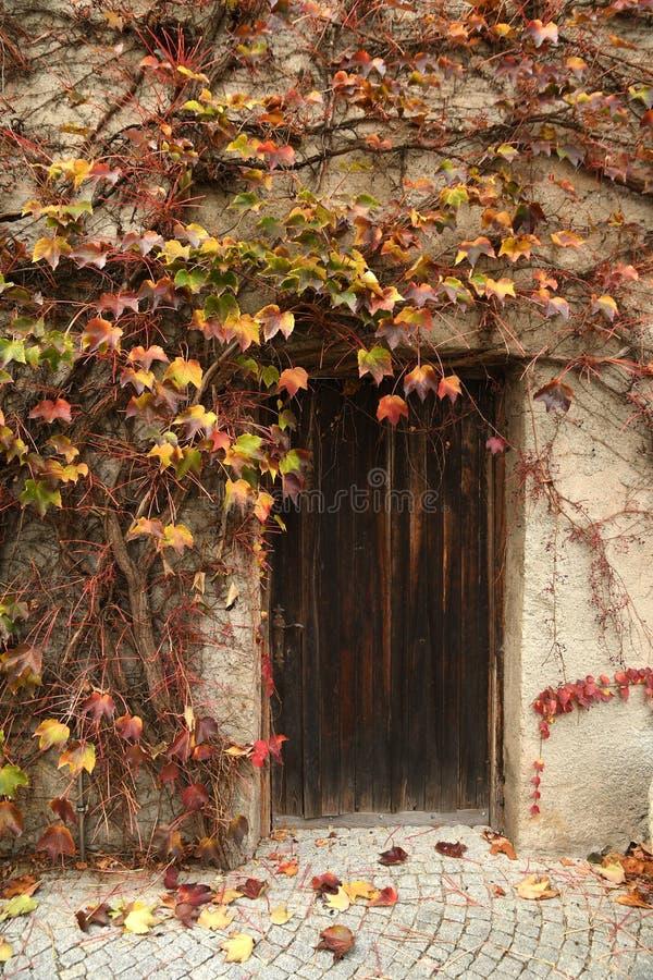oude deur met rode en gele bladeren tijdens de herfstseizoen bij Novacella-Abdij dichtbij Bolzano, Italië royalty-vrije stock afbeelding