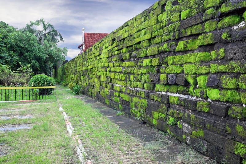 Oude die muur met groen mos, Makassar (Indonesië) wordt behandeld royalty-vrije stock afbeelding