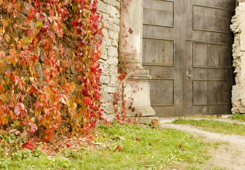 Oude die muur van steen met wilde druiven en poorten aan de gietvorm wordt behandeld royalty-vrije stock afbeeldingen