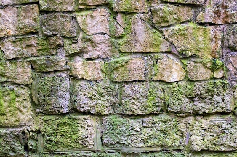 Oude die steenmuur met mos wordt behandeld stock fotografie