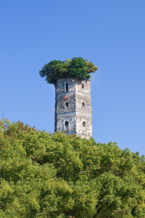 Oude die toren door weelderige groene bomen, Jiangxin-Eiland, Wenzhou, Zhejiang-Provincie, China wordt omringd royalty-vrije stock foto's
