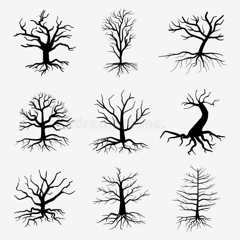 Oude donkere bomen met wortels Vector dood bos stock illustratie