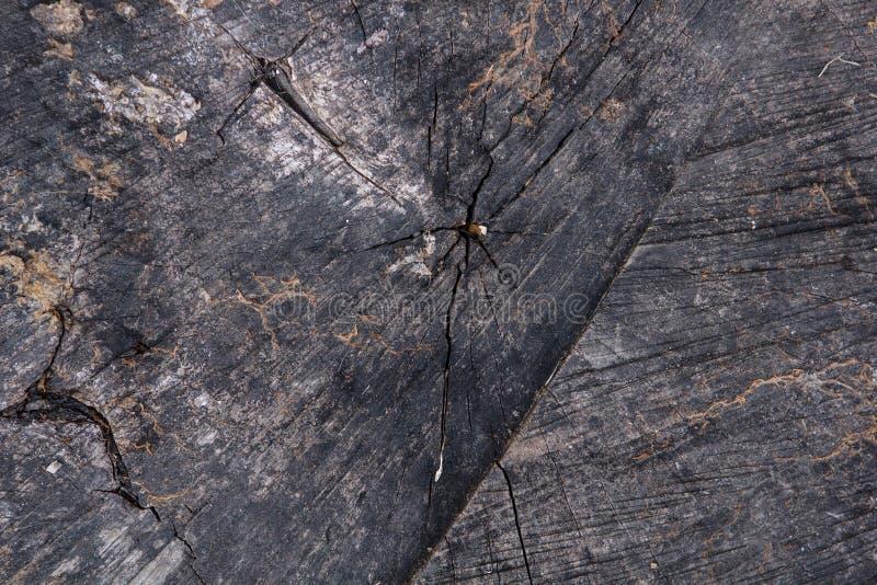Oude donkere houten textuur met barsten royalty-vrije stock foto