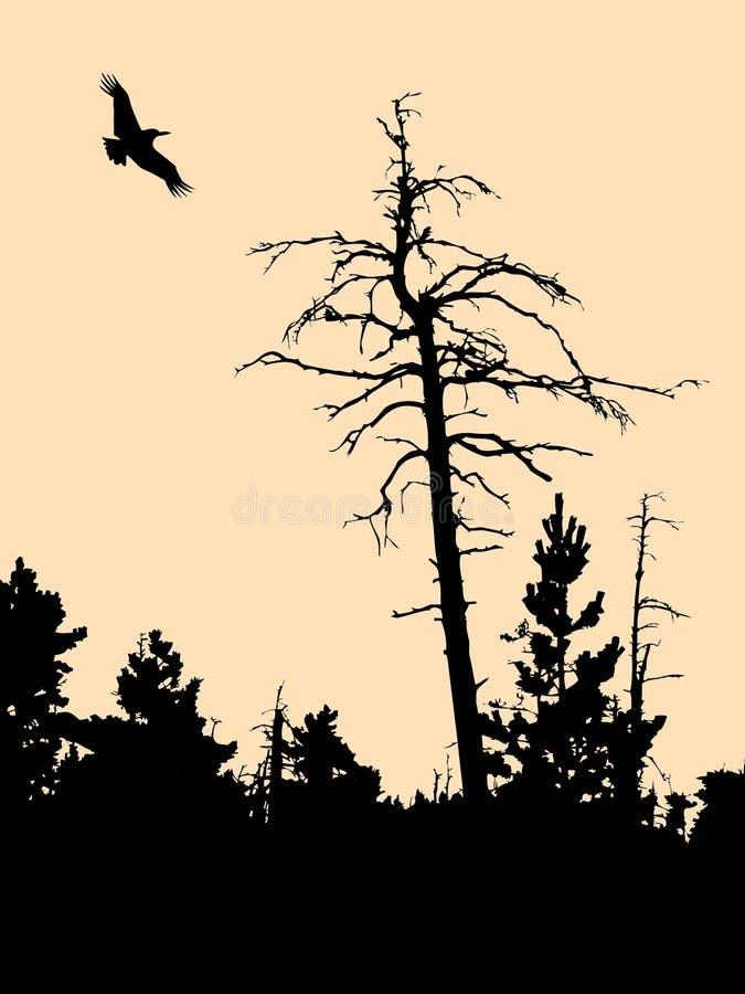 Oude droge boom vector illustratie