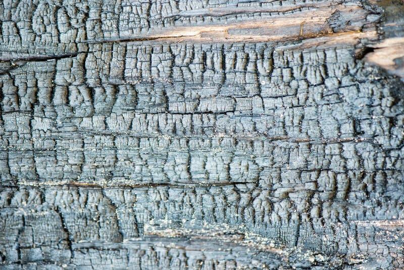 Oude droge gebrande houten planken royalty-vrije stock foto