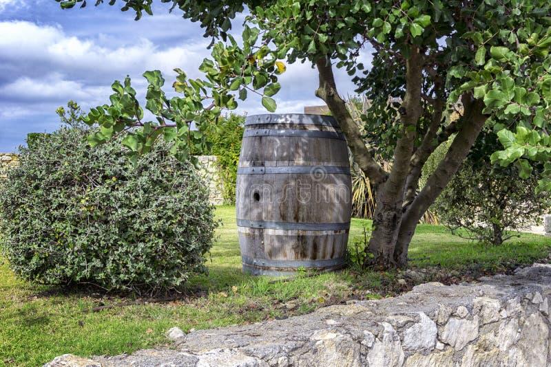 Oude en bevlekte wijn of whiskystaaf stock afbeelding