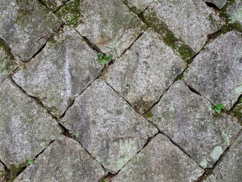 Oude en geregelde steenblokken met mos en grond in hiaten tussen stock foto's
