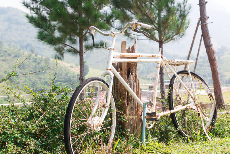 Oude fiets royalty-vrije stock afbeelding