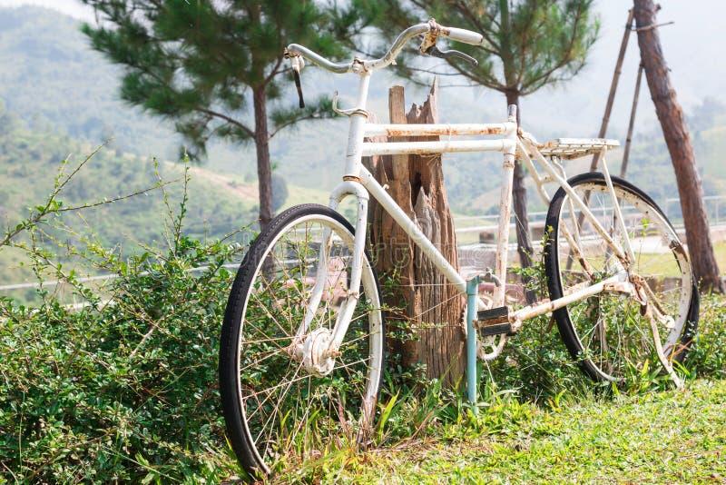 Oude fiets in Toevlucht stock afbeeldingen