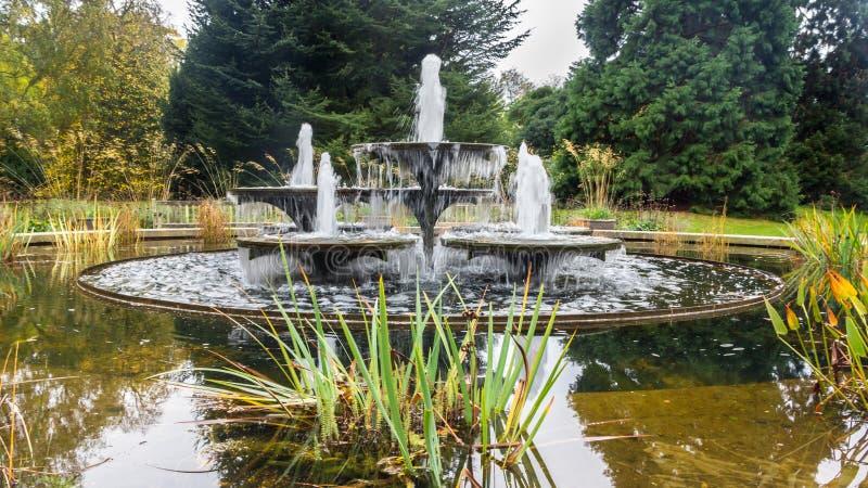 Oude fontein Cambridge het UK stock afbeeldingen