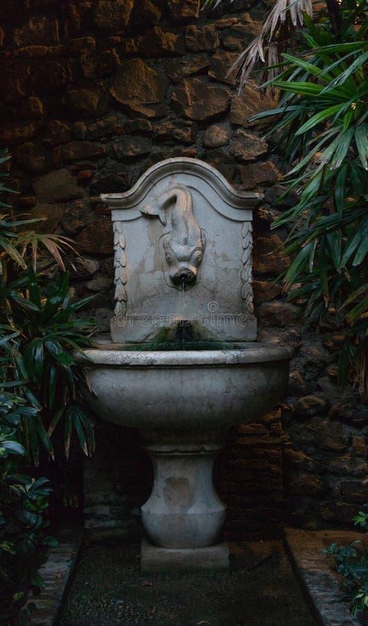 Oude fontein met beeldhouwwerk van een vis in een $ce-andalusisch binnenplaats royalty-vrije stock foto's