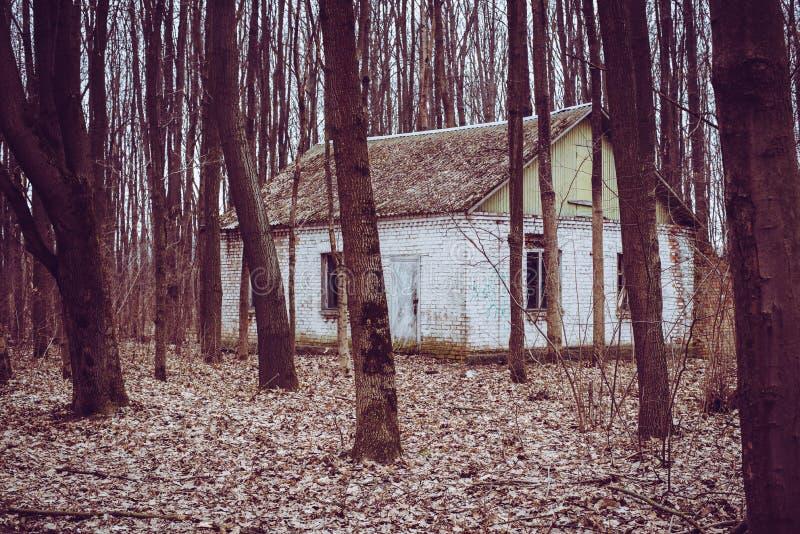 Oude gebouwen in het hout royalty-vrije stock afbeelding