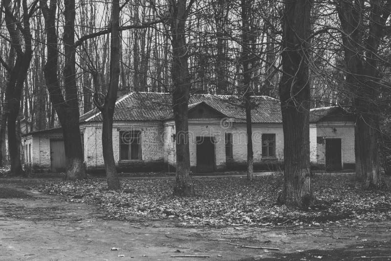 Oude gebouwen in het hout stock foto's