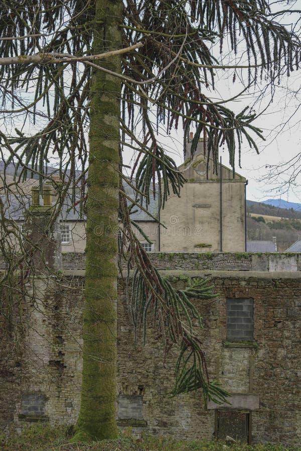 Oude gebouwen ierland stock foto
