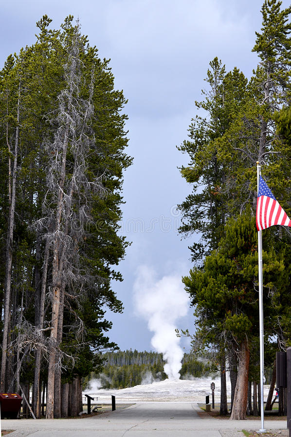 Oude Gelovige Geiser, Nationaal Park Yellowstone royalty-vrije stock afbeeldingen