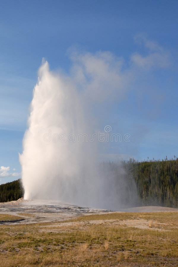 Oude Gelovige Geiser. Yellowstone NP stock afbeelding