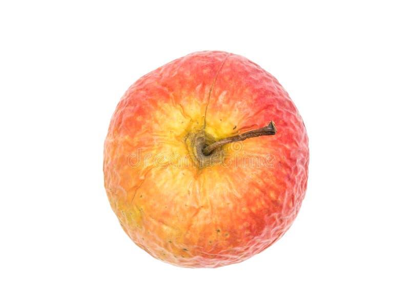 Oude gerimpelde appel royalty-vrije stock afbeelding