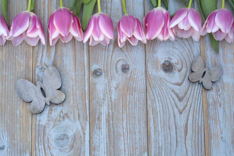 Oude grijze blauwe houten achtergrond met roze witte tulpengrens op een rij en lege exemplaarruimte met de houten vlinders van de stock afbeeldingen