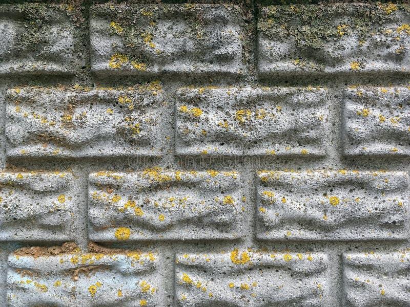Oude grijze de muurachtergrond van de cementomheining met mos en baksteenvorm stock afbeelding