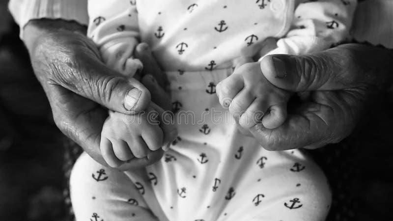 Oude grootmoederhanden die pasgeboren handen, het gezinsleven van de vierde generatie houden zwart-wit schot, het concept een fam stock afbeeldingen